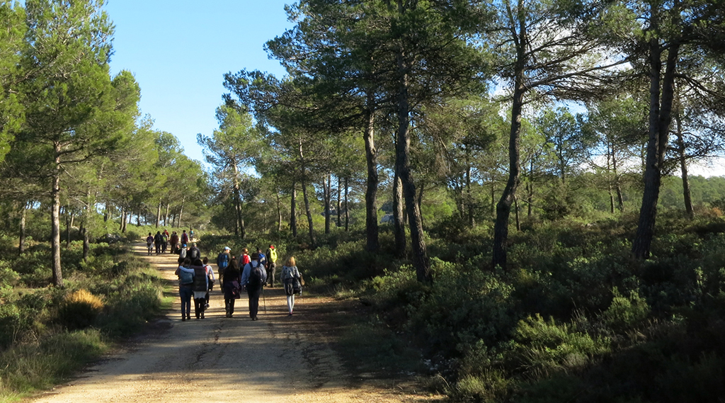 Ruta per la Vall d'Alcalà